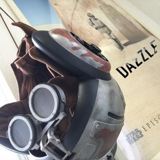 信治ブログ1SWヘルメット.jpg