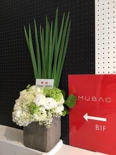 MUBAC展示会階段.jpg