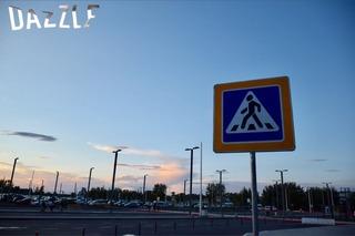 S__7962645.jpg